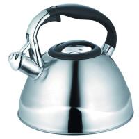 270x270-Чайник со свистком Maestro MR-1338