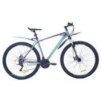 Велосипед Favorit Bullet MD 29 (серый/зеленый)