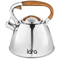 270x270-Чайник LARA LR00-66
