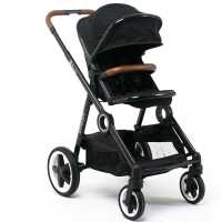 270x270-Прогулочная коляска BabyZz Dynasty (черный)
